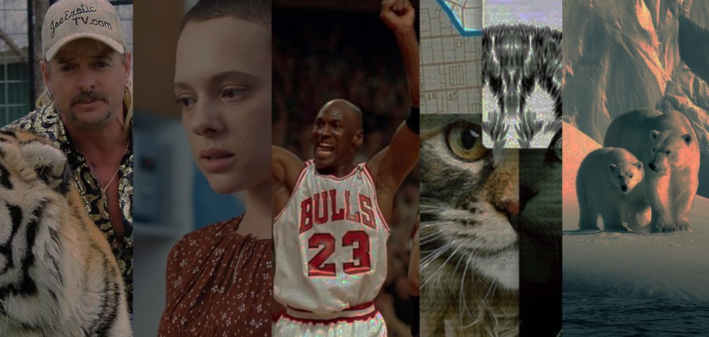 5 Series documentales que debes ver durante la cuarentena en Netflix